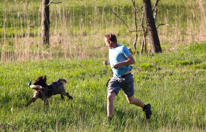 Biegamy z psami – ćwiczenia aktywizujące