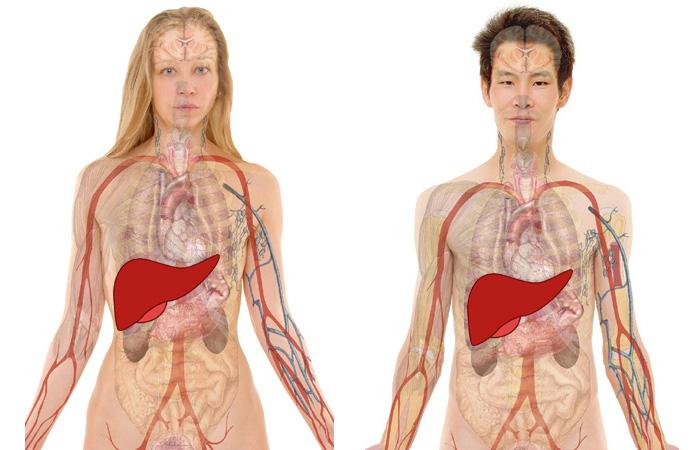 Alfabet chorób XXI wieku – W jak WZW typu C