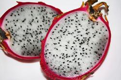 pitaja smoczy owoc