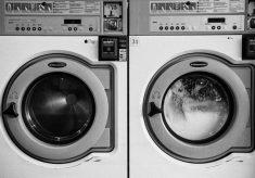 bakterie w pralkach