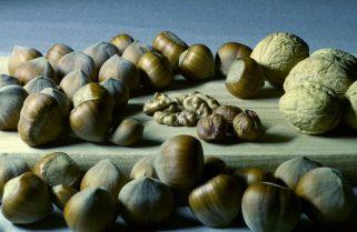 Jakie produkty spożywcze są bogate w magnez?